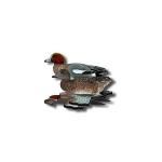 Комплект чучел из 6шт. Nra Fud European Wigeon (свиязь) EW