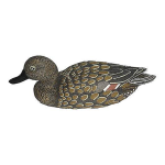 Чучело шилохвость Birdland плавающая (утка) 7502
