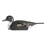 Чучело шилохвость Birdland плавающая (селезень) 7503